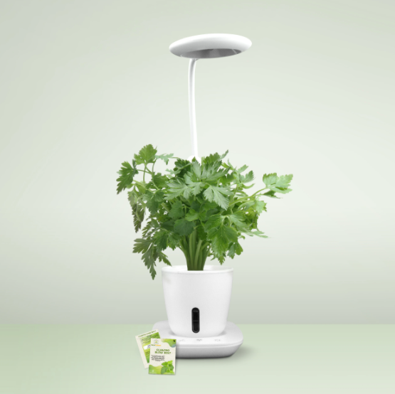 What Is Grow Pad Mini